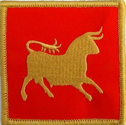 IX Hispana Caesar's Legion Flag Patch Cosplay Roman Empire 3