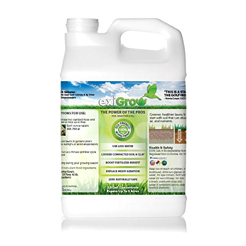 Liquid Aeration Soil Conditioner - Soil Loosener - Solves Common Problems of Compact Soil & Poor Drainage (1, 1 Gallon)