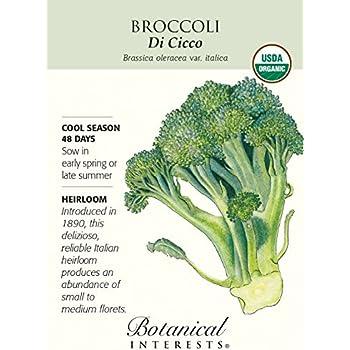 Broccoli Di Cicco Certified Organic Seed