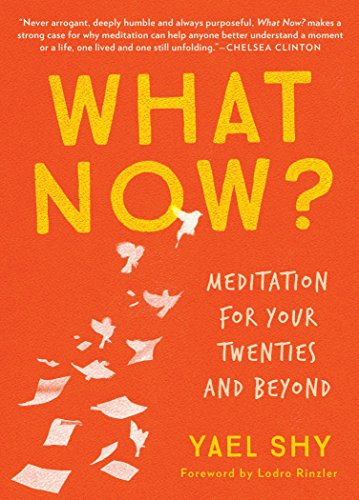 What Now?: Meditation for Your Twenties and Beyond