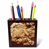 3dRose TDSwhite – Rock Photos - Rock Design Patterns - 5 inch Tile Pen Holder (ph_281913_1)