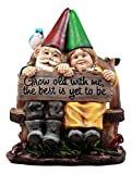 Cheap Ebros Gift Whimsical Mr & Mrs Gnome Sitting On Rustic Chair With Blue Bird Statue Grow Old With Me Guest Greeter Patio