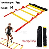 Speed Agility Training Exercise Ladder with Carry Bag, Home Gym Quickness Training Equipment, Soccer Football Fitness Fast Footwork Drills Aid, Adjustable Sport Cones Exercise Folder Hurdles (7M, 14-Rung, red)
