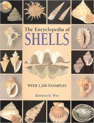 Book Encyclopedia of Shells