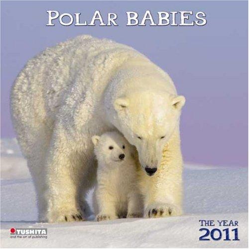 Polar Babies 2011. Wonderful World
