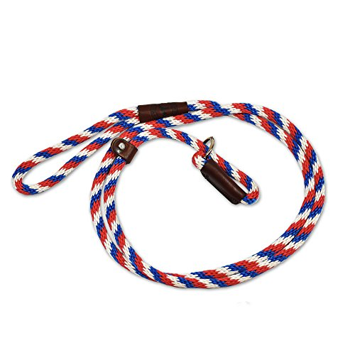 Slip Lead Dog Leash by Rover on Main for Training by Cesar Milan Six Feet Multiple Colors Made in the USA