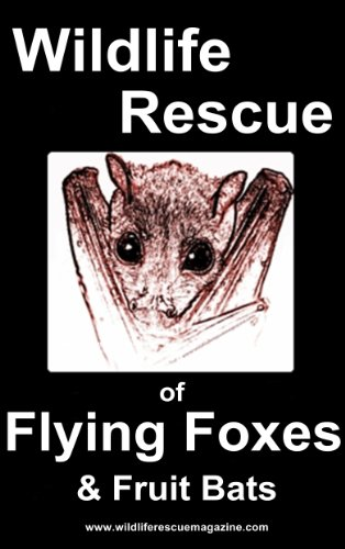 Wildlife Rescue of Flying Foxes and Fruit bats