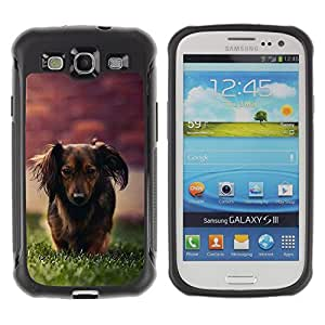 BullDog Case@ Dachshund Little Brown Dog Longhair Grass Rugged Hybrid Armor Slim Protection Case Cover Shell For S3 Case ,I9300 Case Cover ,I9308 case ,Leather for S3 ,S3 Leather Cover Case