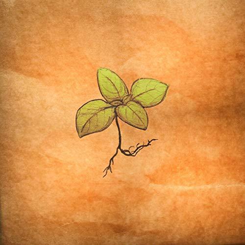 - (Peanut Noodle) Salad Days [feat. Hooter P, Daily Echoes & TomCat Trumpet] [Explicit]