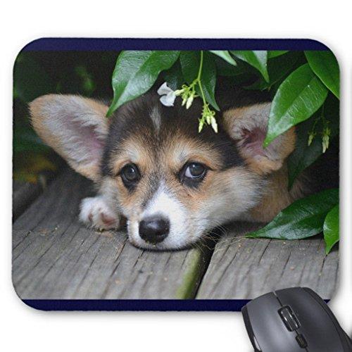 Pembroke Welsh Corgi Puppy Mouse Pad