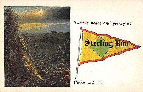 Sterling Run Pennsylvania ? Greetings Pennant Flag Pumpkin Patch PC JE229623