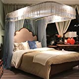 Princess Mosquito Net Stainless Steel Encryption Lace Side Nets 360° Fly Insect Protection Tent for Full Indoor Decorative,BlueGray,200220CM