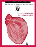 Principles of Anatomy and Physiology, Illustrated Notebook, Tortora, Gerard J. and Derrickson, Bryan H., 047168936X