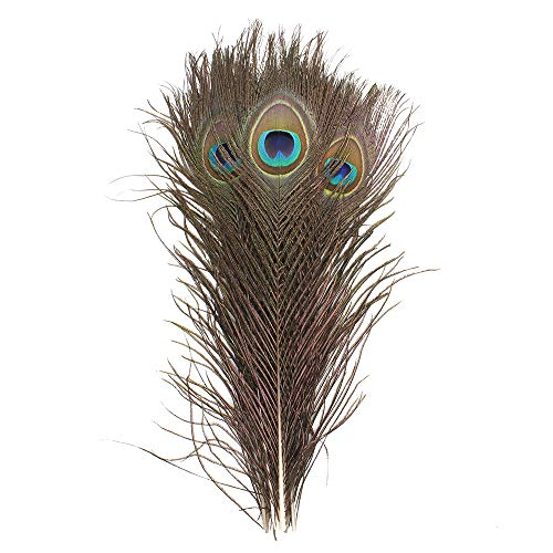 (Real Natural Peacock Eye Feathers 11-14 inchs (28-35cm) for DIY Craft,Wedding Holiday Decoration (10))