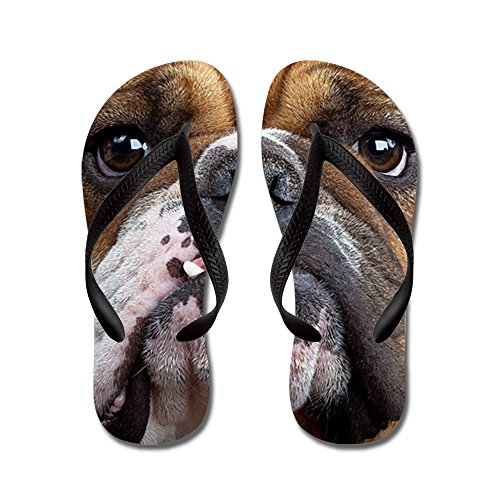 steamship n English Bulldog - Flip Flops, Funny Thong Sandal
