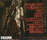 ASYLUM CAVE