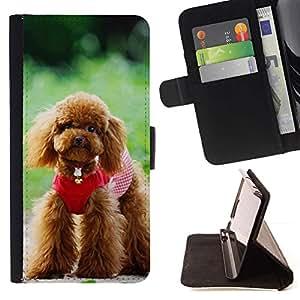 Momo Phone Case / Flip Funda de Cuero Case Cover - Lindo perro de caniche - Sony Xperia M5