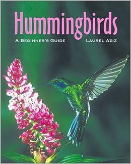 Hummingbirds: A Beginner's Guide