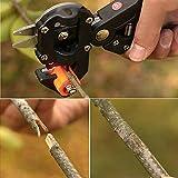 Garden Fruit Tree Pro Pruning Shears Scissor Grafting Cutting Tools Suit // Jardín de árboles frutales tijeras de podar pro tijera injerto corte traje de herramientas