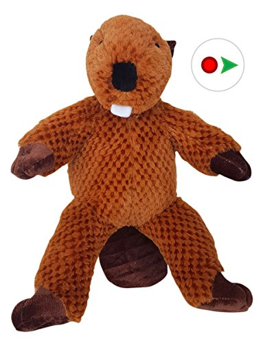 record-your-own-plush-16-inch-beaver-ready-to-love-in-a-few-easy-steps
