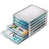 Product review for Flat File Cabinet 5 Drawer Transparent Drawer EL File Cabinet 10825