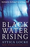 Front cover for the book Black Water Rising by Attica Locke