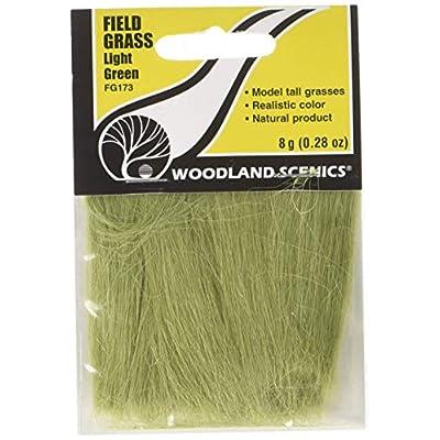 Field Grass 8g-Light Green: Toys & Games