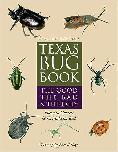 Amazon com: Texas Bug Book: The Good, the Bad, and the Ugly