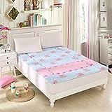FDCVS Bedroom Thicken Keep warm Tatami mats Mattress, Student [dorm room] Collapsible Mattress-F 120x200cm(47x79inch)