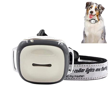 OMZBM Smart Pet Collar GPS Localizador Tracker 2G gsm IPX6 Impermeable Gatos Perros Actividad Monitor Libre