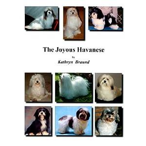 The Joyous Havanese 23