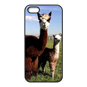 QSWHXN Diy Lama Pacos Selling Hard Back Case for Iphone 5 5g 5s