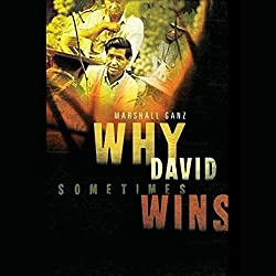 Why David Sometimes Wins