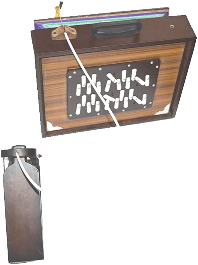 SHRUTI BOX: Amazon.es: Instrumentos musicales