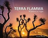 Terra Flamma: Wildfires at Night