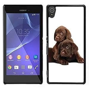 Caucho caso de Shell duro de la cubierta de accesorios de protección BY RAYDREAMMM - Sony Xperia T3 - Los cachorros labrador retriever del chocolate
