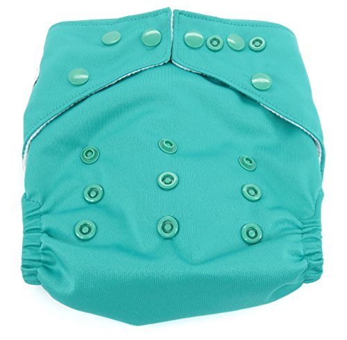 Dandelion Diapers Diaper Cover Shell with Snaps, Seaglass