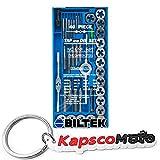 Biltek 40pc Professional Metric Tap and Die Set T-Handle Wrench Screw Pitch Gauge NC NF + KapscoMoto Keychain