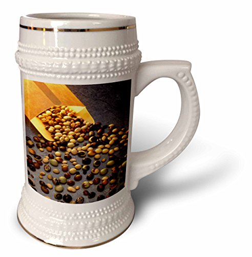 Seed Bean Gold - 3dRose TDSwhite – Farm and Food - Food Assorted Soybean Seeds - 22oz Stein Mug (stn_285119_1)