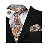 Barry.Wang Orange Paisley Tie Set Handkerchief Formal Suit Necktie,Orange,One Size