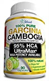 95% HCA (Fast Acting) Pure Garcinia Cambogia Extract Appetite Suppressant Extreme Carb Blocker and Fat Burner Supplement for Fast Weight Loss, Fat Metabolism. Best Raw Diet Pills For Women and Men