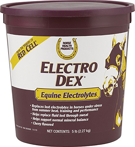 Dex Supplements (Horse Health Electro Dex Equine Elecrolytes, 5-Pound)