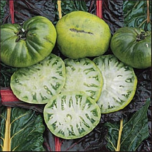 (25 seeds Aunt Ruby German Green Tomato Seed)