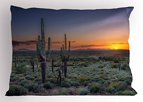 Ambesonne Saguaro Pillow Sham, Sunset Over The Phoenix Valley in Arizona Mountain State Park, Decorative Standard Size Printed Pillowcase, 26 X 20 inches, Sage Green Orange Night Blue