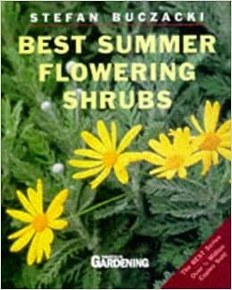 Best Summer Flowering Shrubs (