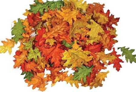 Assorted Mini Fall Color Oak Leaves - Pack of 90 Pcs (Oak Leaves)