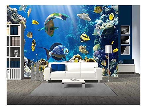 wall26 - Photo of a Tropical Fish on a Coral Reef - Removable Wall Mural | Self-Adhesive Large Wallpaper - 100x144 inches