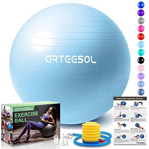 arteesol Exercise Ball Anti-Burst