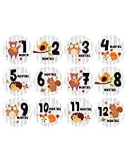 PRETYZOOM Baby 12 Month Stickers Forest Animal Months of The Year Stickers for Infant Birth to 12 Months Belly Milestone Stickers for Memory Scrapbook Photo Props Baby Shower Gift 12pcs