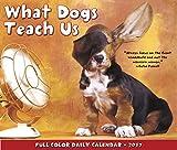 What Dogs Teach Us 2017 Box Calendar